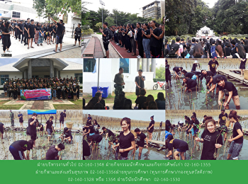 SSRU Volunteer students lead mangrove planting activity marking National Mother's Day